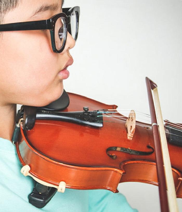 Violin Shoulder & Chin Rests